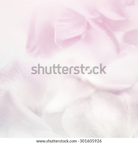 vivid color flower petals in soft color on mulberry paper texture for background