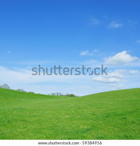 Vivid Green Grass and Blue Sky - stock photo