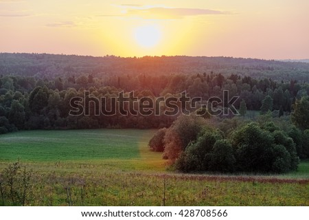 Vivid summer forest between hills scene toned by beautiful sunset. Sunset above a green forest. Fresh panoramic sunset forest view. Sun beams through vivid green forest at sunset. Sunset Forest field. - stock photo