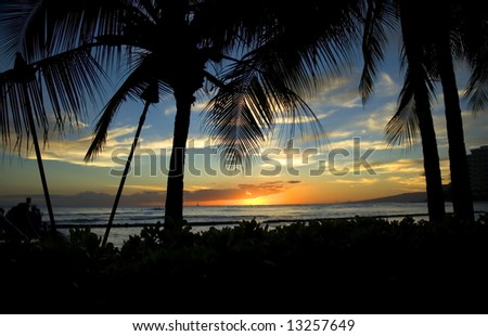 Vivid Sunset sky framed by palm trees and vegetation - stock photo