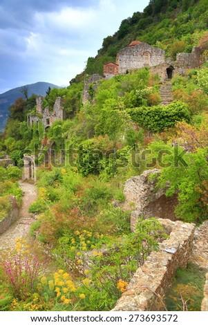 Vivid vegetation hides ruins of the Byzantine city of Mystras, Greece - stock photo