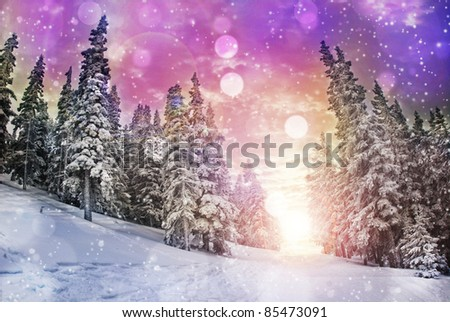 Vivid winter landscape - stock photo
