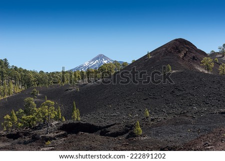 Volcanic landscape near Teide, Tenerife, Spain - stock photo