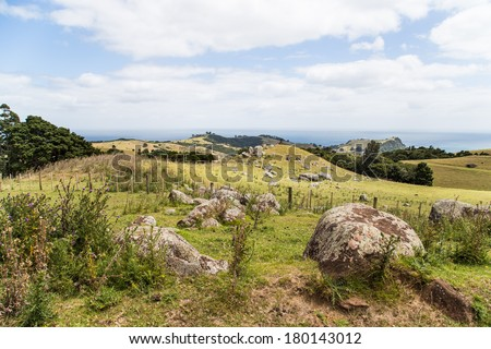 Volcanic rocks on the hillside on Waiheke island, Hauraki Gulf, New Zealand. - stock photo