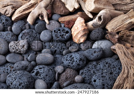 Volcanic stones and shells. - stock photo