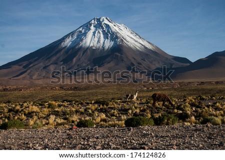 Volcano in Atacama Desert - stock photo