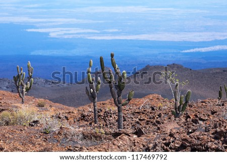 Volcano Sierra Negra, Galapagos Islands, Ecuador. The second largest crater in the world - stock photo