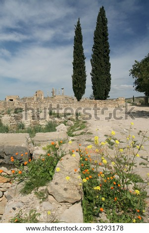 Volubilis is Roman old city in Morocco, and it is declared a UNESCO World Heritage site. - stock photo