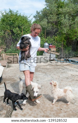 Volunteer at a dog sanctuary feeding the dogs - stock photo