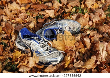 VSETIN, CZECH REPUBLIC - NOVEMBER 05, 2011: Running shoes lay in autumn leaves.