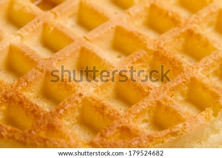 Waffle - This is a shot of a bare waffle. Shot with a shallow depth of field. - stock photo