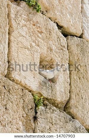 Wailing Wall useful for background. Jerusalem, Israel. - stock photo