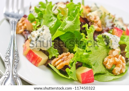 Waldorf Salad with greens, apples, walnuts, and blue cheese.