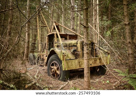 WALDRON ISLAND, USA - MAY 25, 2014: An environmental view of an old trash hauler truck that is slowly rusting away in a new growth forest. - stock photo