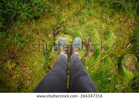 Walk in forest concept - stock photo