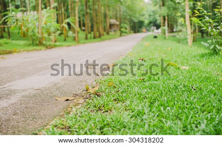 Walk way in Chaeson national park Lamapng, Thailand - stock photo