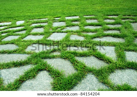 Walk way in the garden, Stone path , the green garden - stock photo