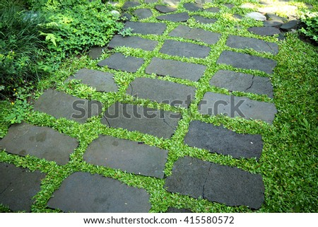 walk way make from stone and grass