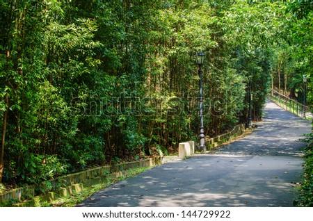 Walk way Path through a Tranquil Verdant Botanical Garden - stock photo