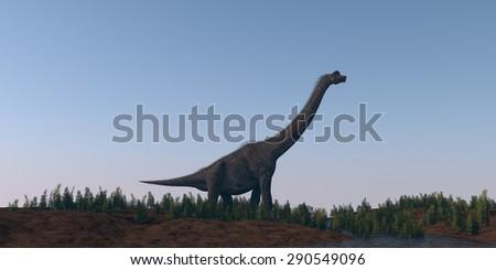 walking brachiosaurus - stock photo