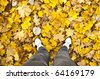 Walking in autumn forest - stock photo