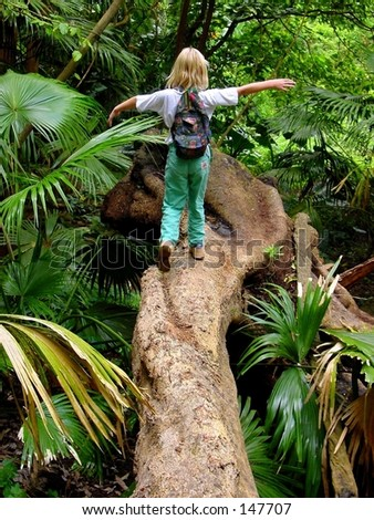 Walking on a tree in the jungle - stock photo