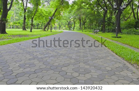 Walking or running in the park. - stock photo