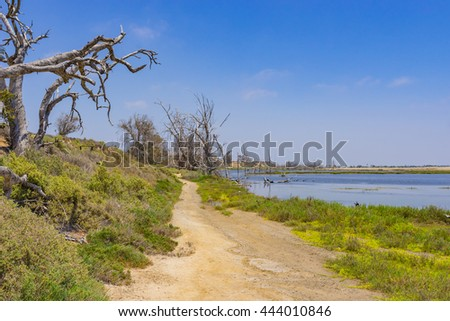 Walking path alongside of blue tidal pool from the Pacific Ocean near Huntington Beach California. - stock photo