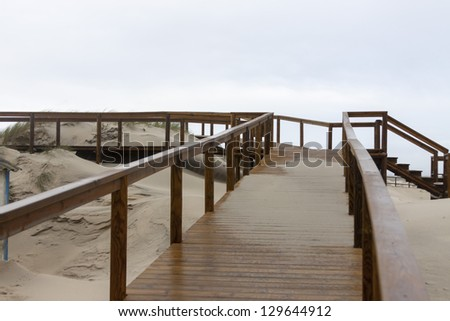 Walking paths taking you to the beach