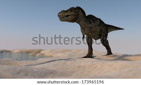 walking tyrannosaurus - stock photo