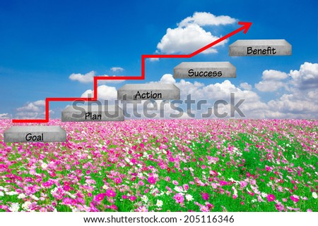 walking up stepping ladder have red rising arrow on field flower against blue sky with word goal plan action success benefit idea concept for success and growth - stock photo