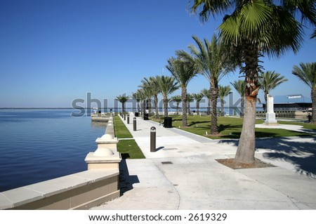 Walkway and Palms in Sanford, Florida