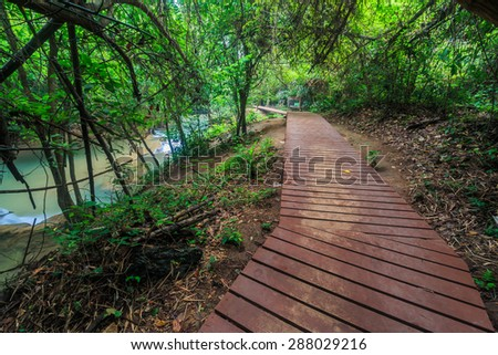 Walkway bridge, Boardwalk in the forest at kanchanaburi of Thailand