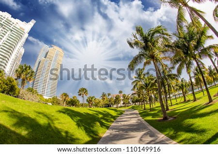 Walkway in a beautiful Park with Palms, Miami Beach - stock photo