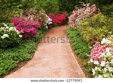 Walkway through flower garden - stock photo