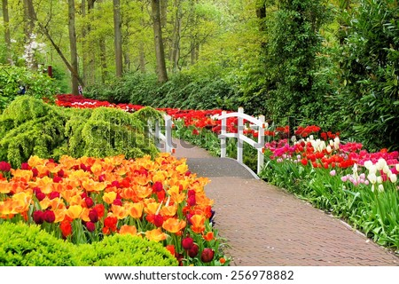 Walkway through spring flowers at Keukenhof Gardens, Netherlands - stock photo