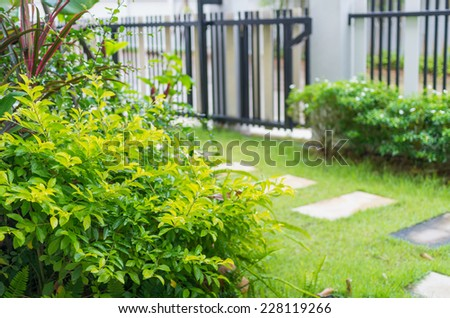walkway with the garden for decorate - stock photo