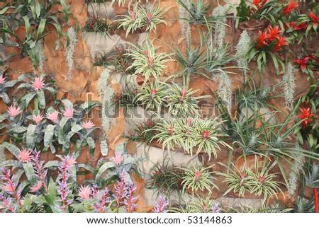 Wall full of the flowers, decoration on the wall