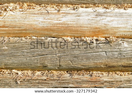 Wall of house made of logs and insulated with moss in the cracks in traditional Russian style - stock photo