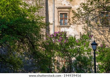 wall of the old house and trees - stock photo