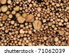 Wall of timber - stock photo