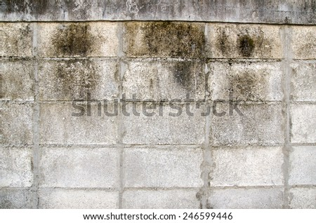 wall texture grunge abstract