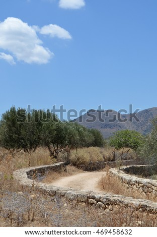 Walled Track in rural Crete during the Summer