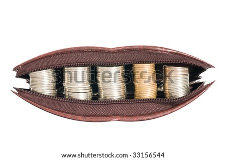 wallet is smiling - stock photo