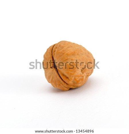 walnut against white background