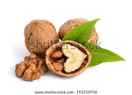 Walnut isolated on white background. - stock photo