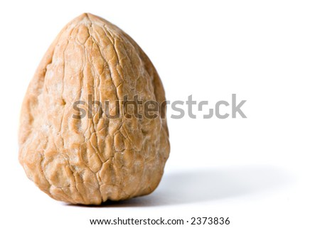Walnut, isolated on white, straight - stock photo