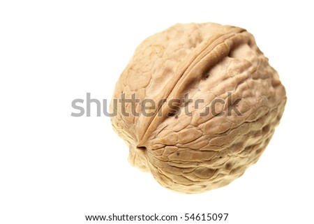 Walnut  isolated over the white background