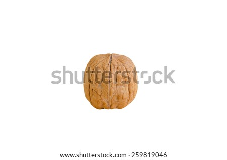 walnut on a white background - stock photo
