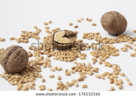 Walnut pieces and shells. - stock photo